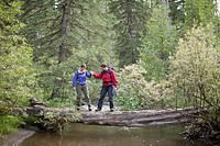 Two backpackers holding hands for balance over log bridge