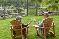Senior couple making a toast with wine outdoors