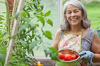 Senior woman with tomatoes from greenhouse garden