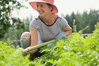 Attractive woman in straw hat hoeing garden