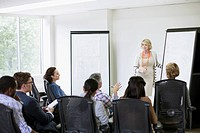 Mature businesswoman presenting to an office group (thumbnail)