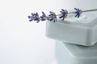 Bar of soap with lavender sprig