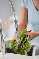 Mid_adult woman rinsing rhubard in kitchen sink