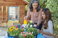 Mom and preteen daughter repotting flowers