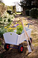 Cart of flowers in garden
