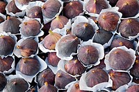 Close up of Figs