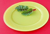 Salad on yellow plate
