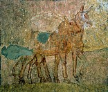 Donkey and ox of the Nativity, early Christian frescoes, hypogeum of Santa Maria in Stelle, Verona (UNESCO World Heritage List, 2000), Veneto. Detail....