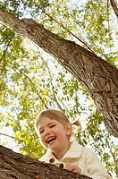Child climbing a tree