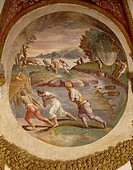Net fishing in the river, fresco by Giulio Romano (1499-1546), Hall of the medallions, Palazzo Te, Mantua (UNESCO World Heritage List, 2008). Italy, 1...