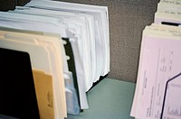 Dividers Containing Business Documents