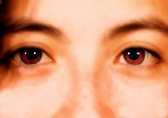 Woman´s Brown Eyes