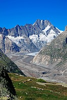 Switzerland, Europe, Canton Bern, Swiss, Alps, Schreckhorn, Unteraar, glacier, Travel, Geography, Nature, Mountain, Landscape, Vertical