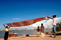 Children drying sari at Worli village base of Worli Fort in Bombay Mumbai; Maharashtra; India