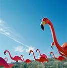 Pink flamingo lawn ornaments
