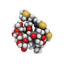 Bleomycin, molecular model. Bleomycin is an antibiotic produced by the bacterium Streptomyces verticillus. It is used in the treatment of cancer and w...