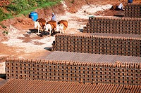 Workers including women at the brick factory in a village of Sangli , Maharashtra , India Nicely arranged bricks can be seen here