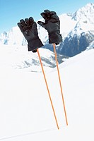Pair of gloves on ski poles