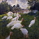 The turkeys, 1877, by Claude Monet (1840-1926), oil on canvas, 174.5 x172.5 cm.  Paris, Musée D'Orsay (Art Gallery)