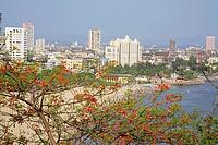 Girgaon Chowpaty ; Malabar hill ; B. G. Kher marg ; Gibbs road ; Grant road ; Bombay now Mumbai ; Maharashtra ; India