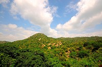 Greenery on mountain under beautiful clouds ; Marwar ; Rajasthan ; India