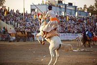 Nihangs or Sikh warriors on his horse showing stunts during cultural events for 300th year´s celebrations of Consecration of perpetual Sikh Guru Grant...