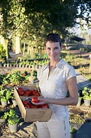 Portrait of a woman holding a crate of just_picked tomatoes
