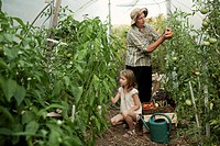 grandmother and young girl in the greenhouse, kit