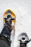 Close up of walker wearing snowshoes on feet while snowshoeing in deep powder snow in winter