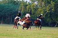 Polo match , Jodhpur , Rajasthan , India