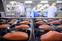 Fish filets in packaging in factory