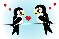 Cute swallows in love