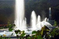 Fountain in Brindavan Vrindavan garden ; Mysore ; Karnataka ; India