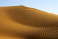 Sand dune in Siyane-ki-Basti ; Jaisalmer ; Rajasthan ; India