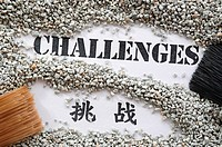 Challenges __ Treasure Word Series