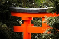 Gate at Fushimi Inari  Kyoto, Japan