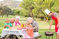 Family enjoying a barbeque in the park