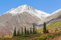 USA, Alaska, Landscape along Denali Highway in autumn with Alaska Range