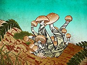 Illustrative image of mushroom growing represents rebuilding from loss