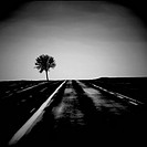 Road. Arras.