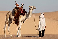 Camel driver gazing in the Sahara desert, Tunisia.