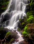 USA, United States, America, Oregon, Hood River, Columbia Gorge, Scenic, Area, waterfalls, green, spring, moss, water,