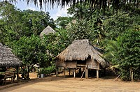 thatched houses in a village of Embera native community living by the Chagres River within the Chagres National Park, Republic of Panama, Central Amer...