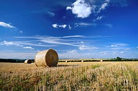 Vast field agricultural field with balls of hay in the foreground and background as well as line´s of hay stretching towards the distant hills. Photog...