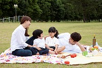 family having a picnic on a picnic blanket