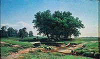 Oaks in Dubki, by Siskin Ivan Ivanovic, 19th Century, 1886, oil on canvas, cm 38 x 62