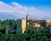 The Alhambra Palace seen from the Mirador de San Nicolas in the Albayzin of Granada, Spain. The Sierra Nevada mountains in the background.