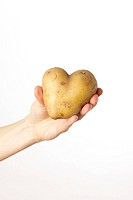 Weibliche Hand hält ein Kartoffel_Herz