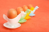 Four cute and bright coloured chicken egg holder with brown eggs
