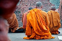 Budhist monks praying in the Dhamekh stupa, Sarnath, Uttar Pradesh, India